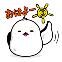 ShimaEnaga sticker #2145908