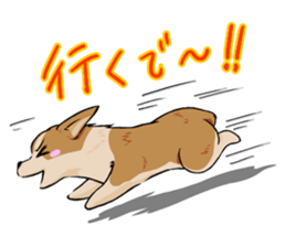 Kansai dialect  Corgi raboo sticker #2147916