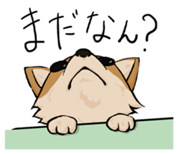 Kansai dialect  Corgi raboo sticker #2147920