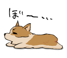 Kansai dialect  Corgi raboo sticker #2147921