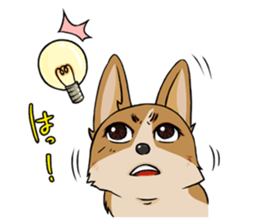 Kansai dialect  Corgi raboo sticker #2147931