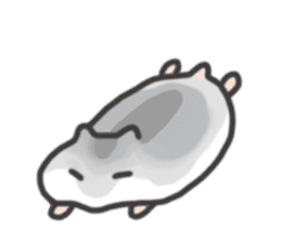 cutie cutie hamsters sticker #2150607