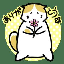 Scoron of cat sticker #2164192