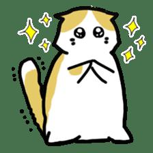 Scoron of cat sticker #2164225