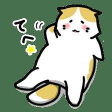 Scoron of cat sticker #2164229