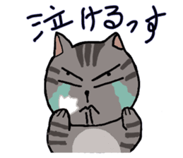 Japanese cat named Kijitora sticker #2164368