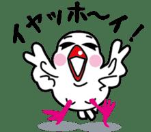 Java sparrow Bunsuka sticker #2171824