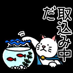 Miracle Catman and Wonder Dogman