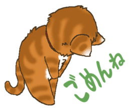 Brown cat thorala sticker #2190557