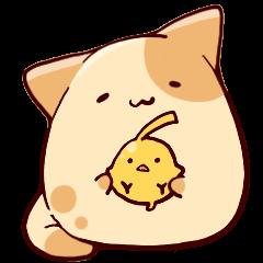 Loose ball cat