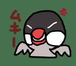 Java sparrow 1 sticker #2193867