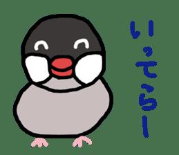 Java sparrow 1 sticker #2193871