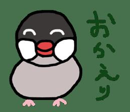Java sparrow 1 sticker #2193874