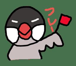 Java sparrow 1 sticker #2193882