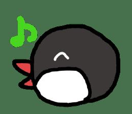 Java sparrow 1 sticker #2193885