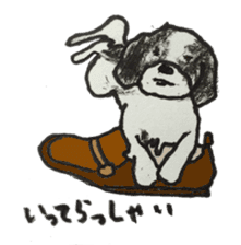 I am Shih Tzu sticker #2199909