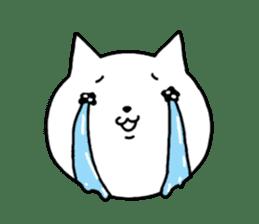 Head of white cat.PLUS sticker #2208231