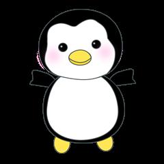 Penguin baby lovely