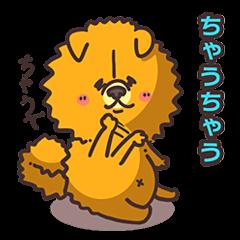 Kansai dialect dog