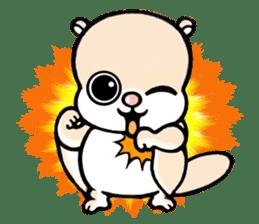 Flying squirrel Festival vol.1 sticker #2261431