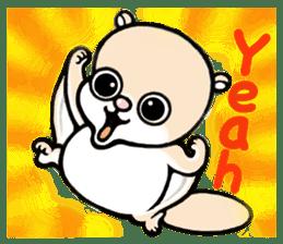Flying squirrel Festival vol.1 sticker #2261442