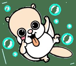 Flying squirrel Festival vol.1 sticker #2261452