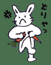with rabbit sticker #2262957