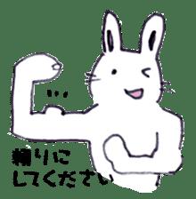 with rabbit sticker #2262968