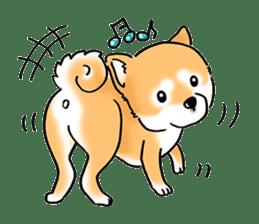 "Shiba Inu ""Hanapi"" & ""Kinako"" body type sticker #2272068"