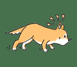 "Shiba Inu ""Hanapi"" & ""Kinako"" body type sticker #2272070"