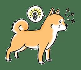 "Shiba Inu ""Hanapi"" & ""Kinako"" body type sticker #2272076"
