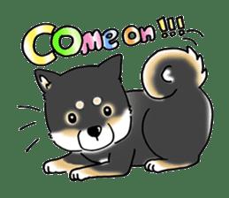 "Shiba Inu ""Hanapi"" & ""Kinako"" body type sticker #2272077"