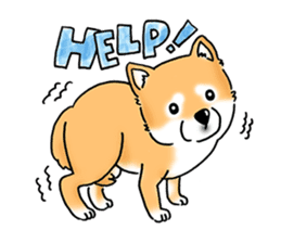 "Shiba Inu ""Hanapi"" & ""Kinako"" body type sticker #2272082"