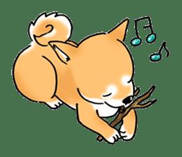 "Shiba Inu ""Hanapi"" & ""Kinako"" body type sticker #2272084"