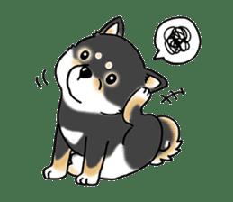 "Shiba Inu ""Hanapi"" & ""Kinako"" body type sticker #2272091"