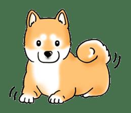 "Shiba Inu ""Hanapi"" & ""Kinako"" body type sticker #2272092"