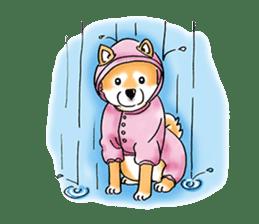 "Shiba Inu ""Hanapi"" & ""Kinako"" body type sticker #2272097"