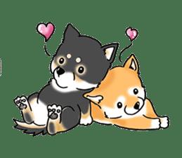 "Shiba Inu ""Hanapi"" & ""Kinako"" body type sticker #2272098"