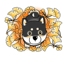 "Shiba Inu ""Hanapi"" & ""Kinako"" body type sticker #2272102"