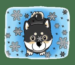 "Shiba Inu ""Hanapi"" & ""Kinako"" body type sticker #2272103"