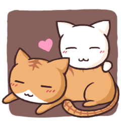 Tabby cat & white cat
