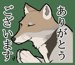 Tibetan sand fox stickers! sticker #2278118