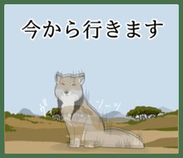 Tibetan sand fox stickers! sticker #2278126