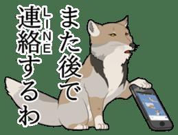 Tibetan sand fox stickers! sticker #2278135