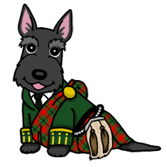 Entertaining friends, Scottish Terrier.