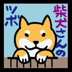 Shiba-Inu-San-no-Tsubo vol.2