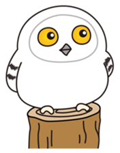 snowy owl sticker #2327100