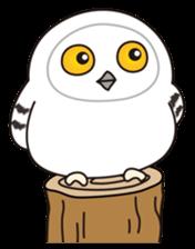 snowy owl sticker #2327100