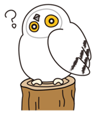snowy owl sticker #2327102