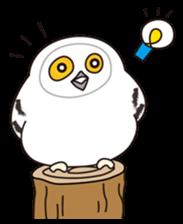 snowy owl sticker #2327103